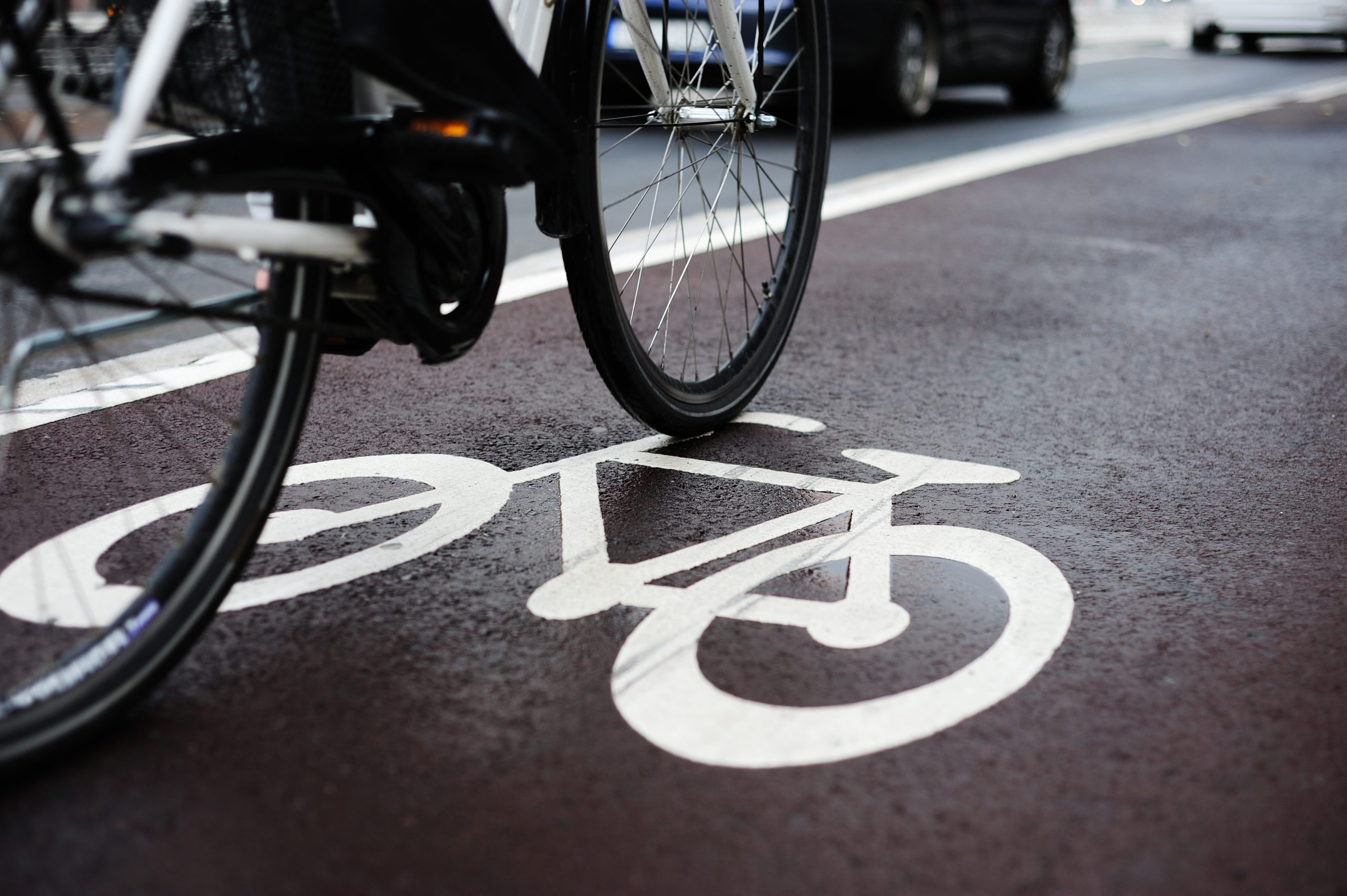 Person riding a bike in a bike lane. Biking laws in Kentucky require drivers to use bike paths if available.